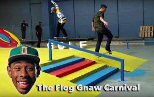 flog gnaw carnival