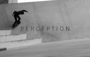 perception octagon