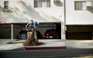the cinematographer project transworld